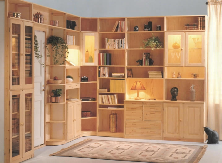 Magnificent Storage Units Living Room 717 x 526 · 184 kB · jpeg